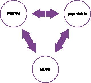 remédiation et réinsertion, articulation entre Esat/EA, Psychiatrie et MDPH