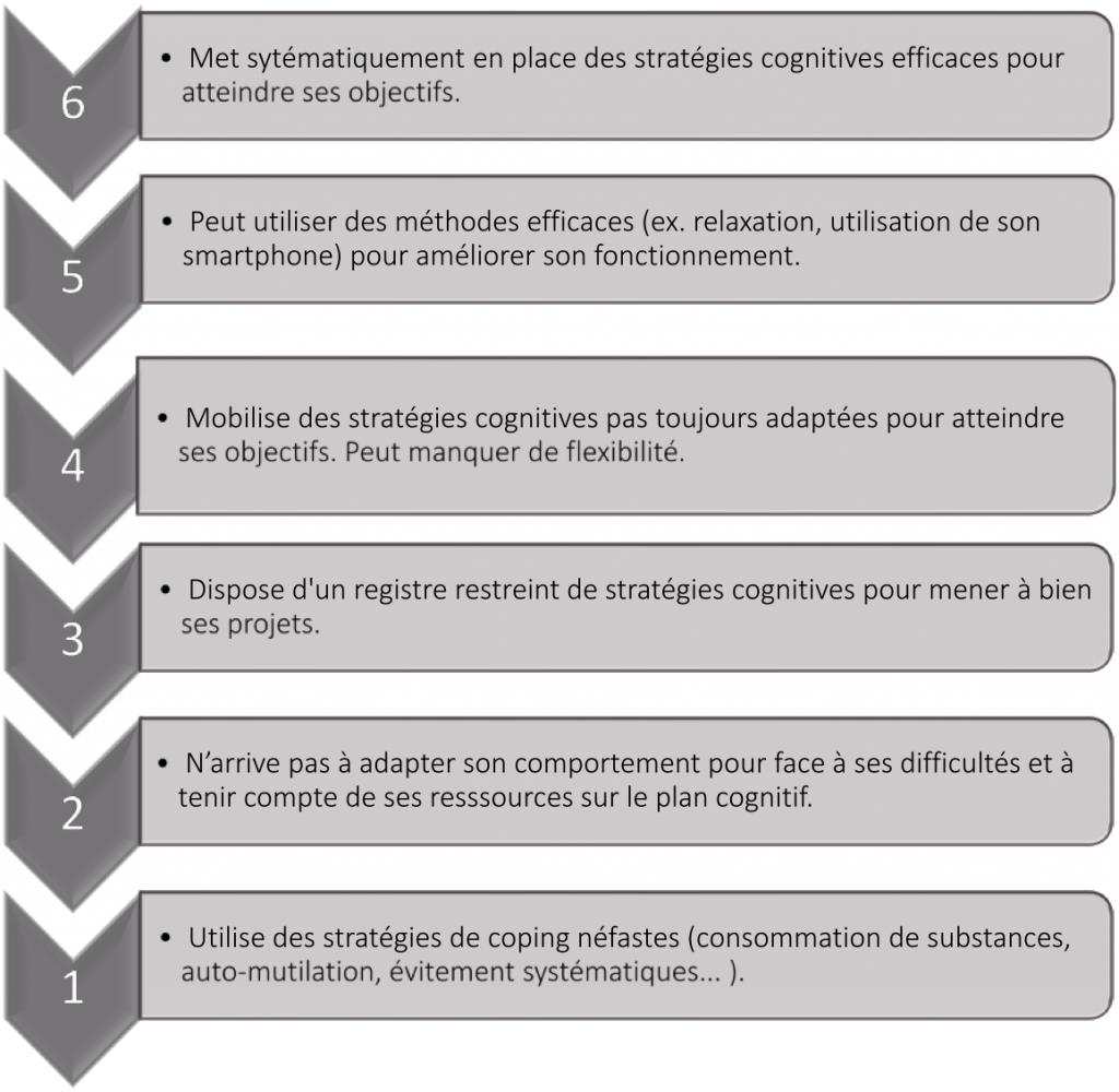 2. Echelle d'adaptabilité/contrôle