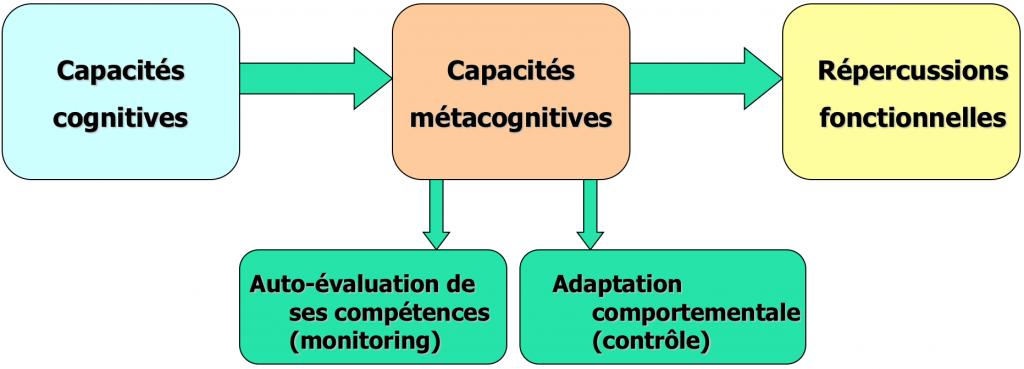 Lien entre les fonctions cognitives et les répercussions fonctionnelles